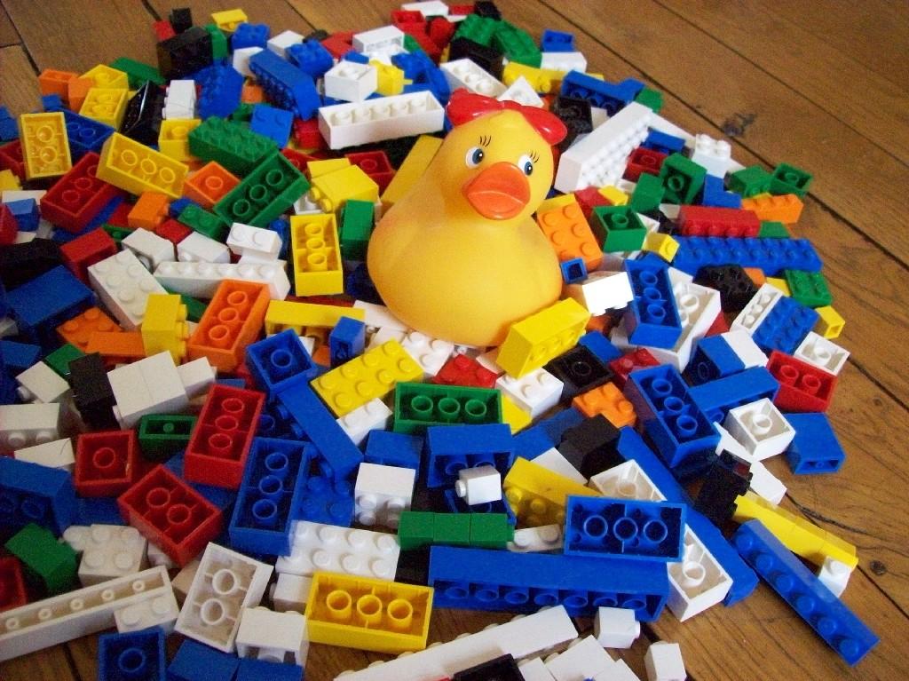 jeanne la cane joue au lego. Black Bedroom Furniture Sets. Home Design Ideas